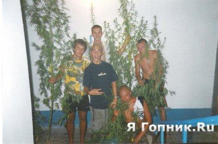 Охуенный урожай....