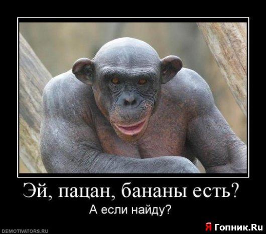 Эй пацан Бананы есть?